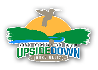 Upside Down ToursGallery - Upside Down Tours